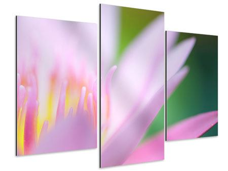 Aluminiumbild 3-teilig modern XXL-Lilie