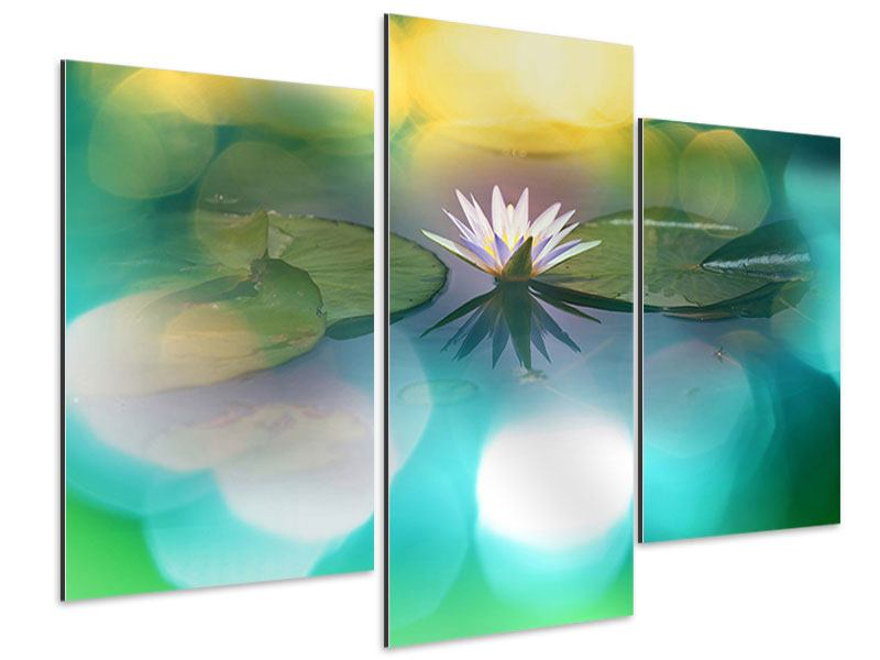 Aluminiumbild 3-teilig modern Lotus-Spiegelung