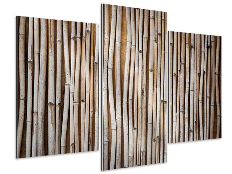 Aluminiumbild 3-teilig modern Getrocknete Bambusrohre