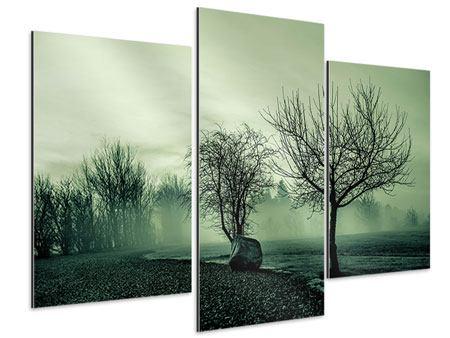 Aluminiumbild 3-teilig modern Der Auwald im Nebel