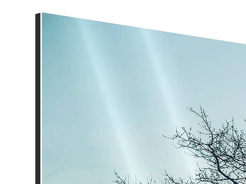 Aluminiumbild 3-teilig modern Der Zauberbaum