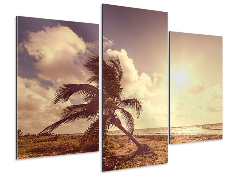 Aluminiumbild 3-teilig modern Die schiefe Palme