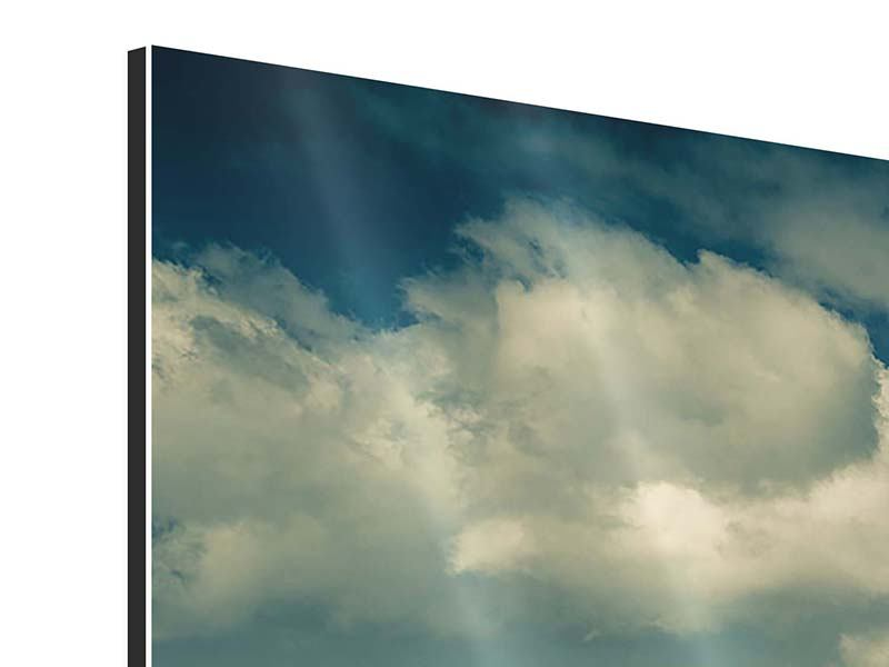 Aluminiumbild 3-teilig modern Der Mohn im Weizenfeld