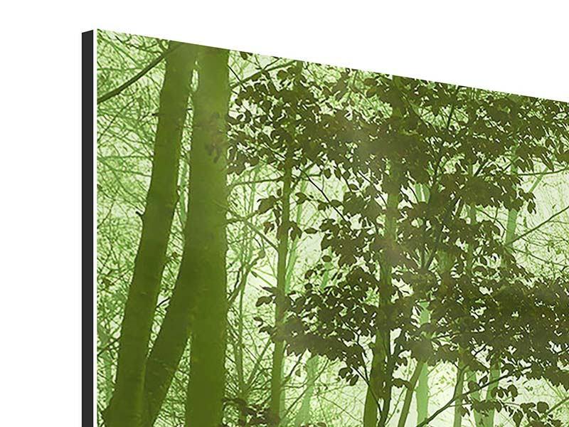 Aluminiumbild 3-teilig modern Nibelungenwald