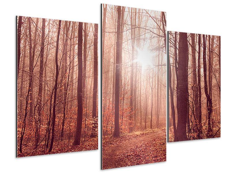 Aluminiumbild 3-teilig modern Sonnenuntergang im Herbstwald