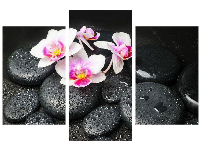 Aluminiumbild 3-teilig modern Feng-Shui-Orchidee Zen