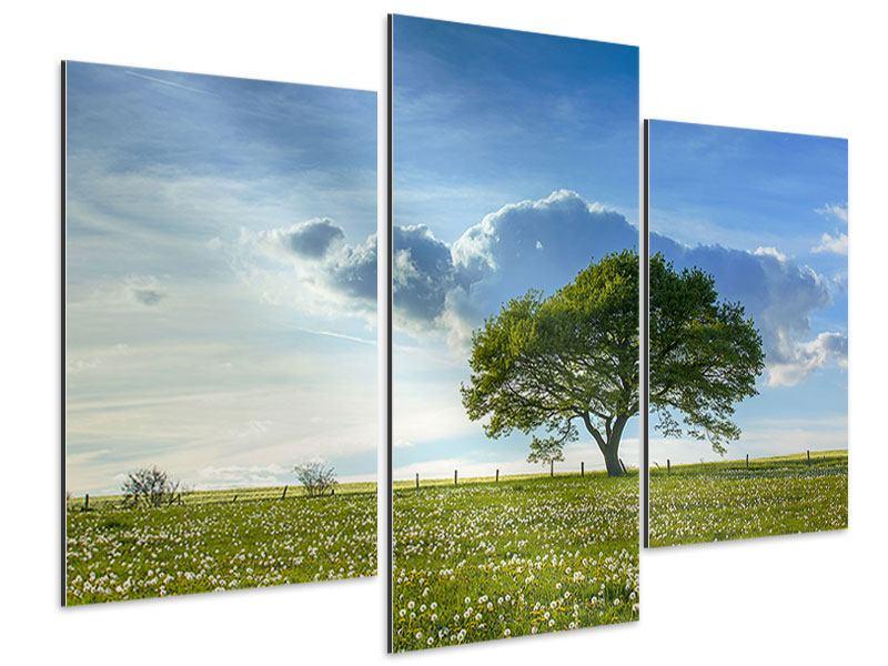 Aluminiumbild 3-teilig modern Frühlingsbaum