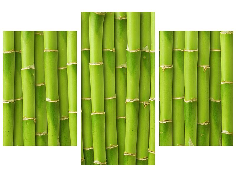 Aluminiumbild 3-teilig modern Bambuswand