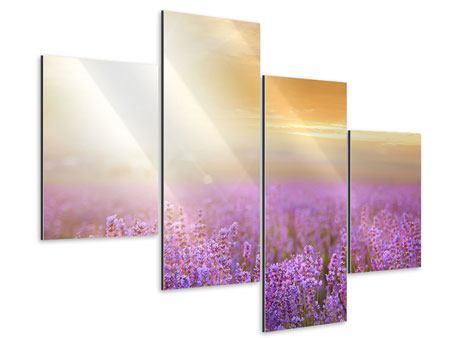 Aluminiumbild 4-teilig modern Sonnenuntergang beim Lavendelfeld
