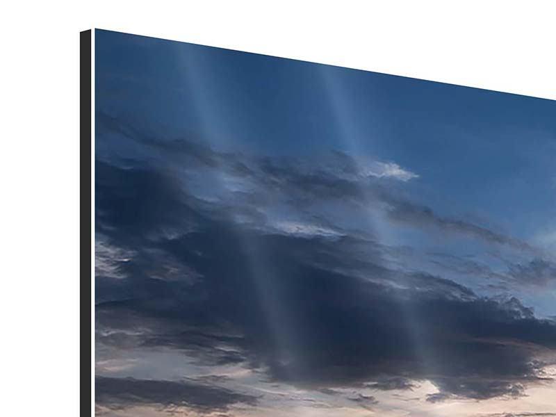 Aluminiumbild 4-teilig modern Ein Feld von Sonnenblumen