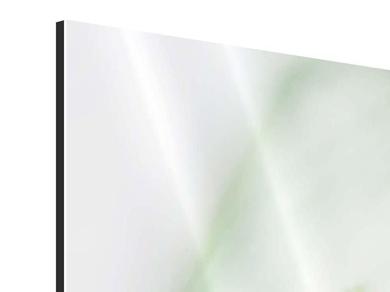 Aluminiumbild 4-teilig modern XXL Pastinak