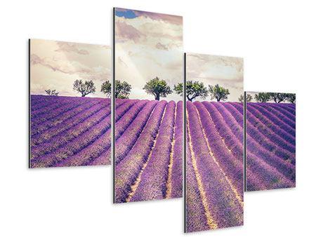 Aluminiumbild 4-teilig modern Das Lavendelfeld