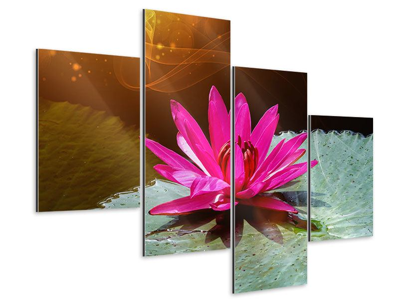 Aluminiumbild 4-teilig modern Der Frosch und das Seerosenblatt