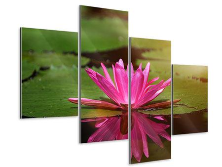 Aluminiumbild 4-teilig modern Lotus im Wasser