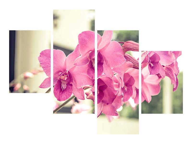 Aluminiumbild 4-teilig modern Ein Fensterplatz für die Orchideen