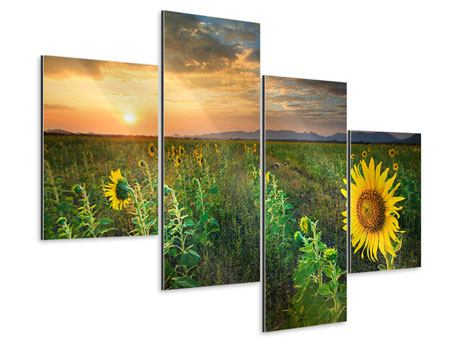 Aluminiumbild 4-teilig modern Sonnenblumenfeld im Abendrot