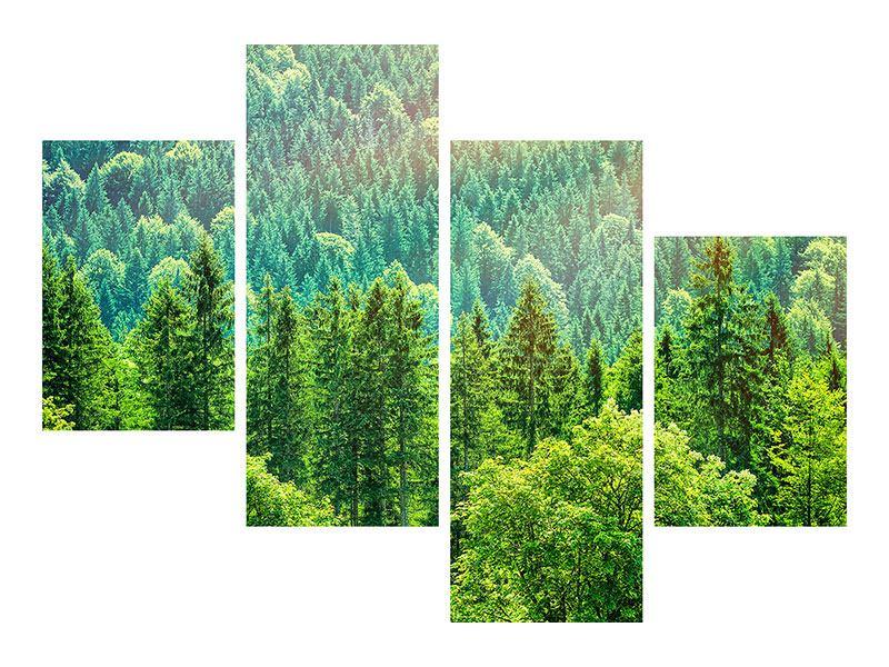 Aluminiumbild 4-teilig modern Der Waldhügel