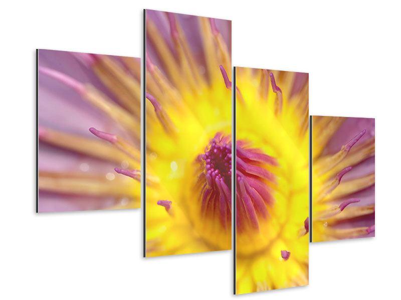 Aluminiumbild 4-teilig modern XXL-Lotus