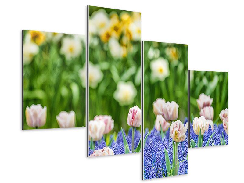 Aluminiumbild 4-teilig modern Ein Garten mit Tulpen