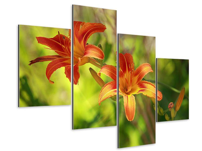 Aluminiumbild 4-teilig modern Lilien in der Natur