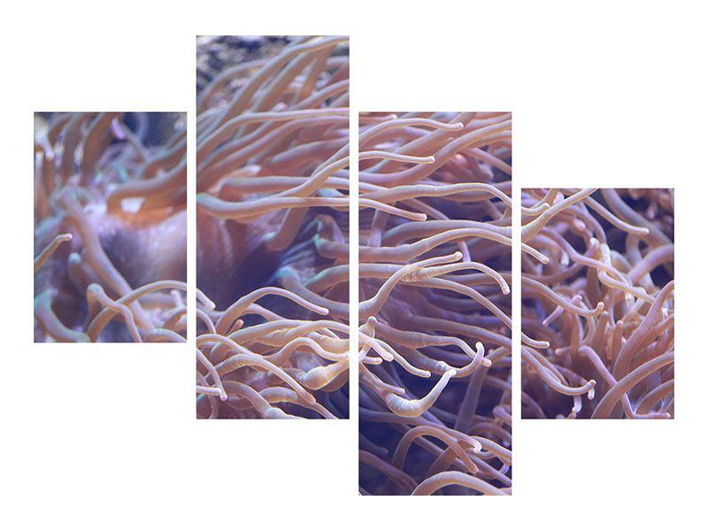 Aluminiumbild 4-teilig modern Korallenriff