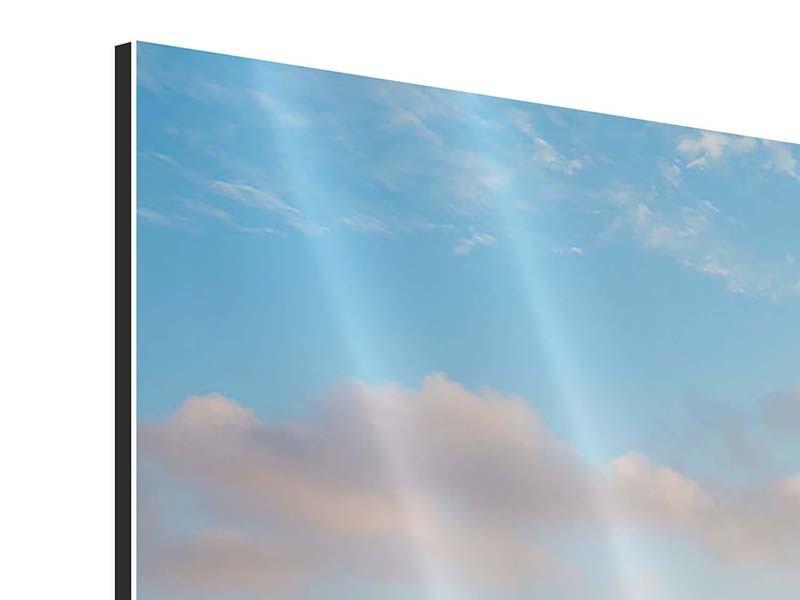 Aluminiumbild 4-teilig modern Das blühende Lavendelfeld