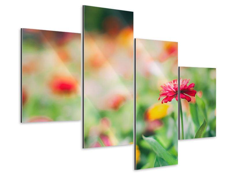 Aluminiumbild 4-teilig modern Im Blumengarten
