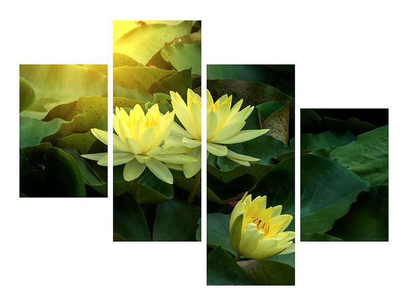 Aluminiumbild 4-teilig modern Wilde Lotus