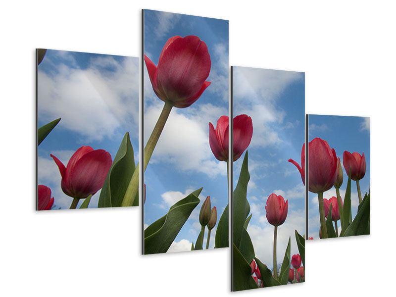 Aluminiumbild 4-teilig modern Tulpen im Himmel