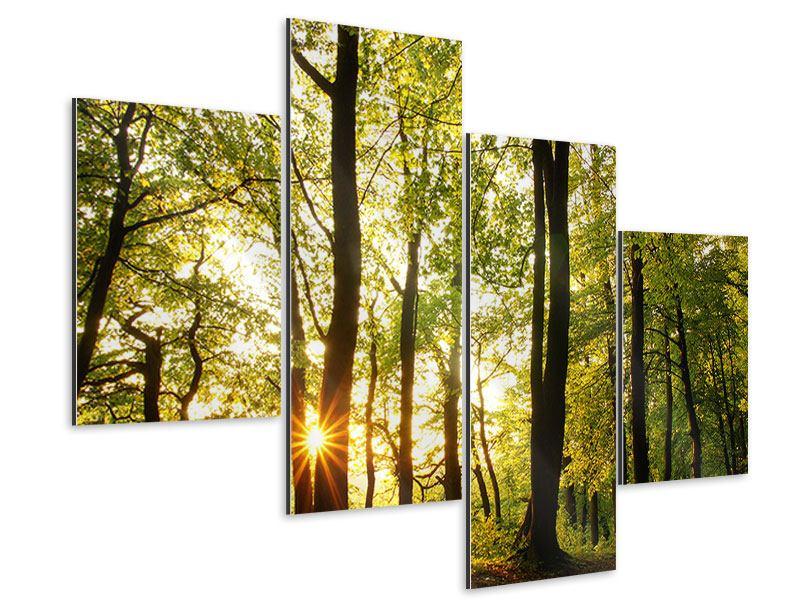 Aluminiumbild 4-teilig modern Sonnenuntergang zwischen den Bäumen