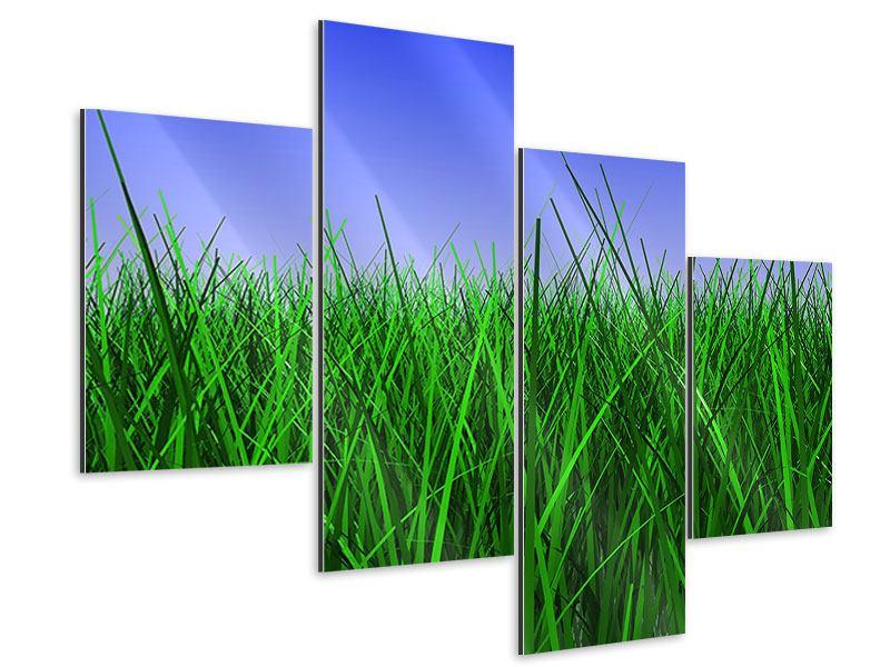 Aluminiumbild 4-teilig modern Im Gras