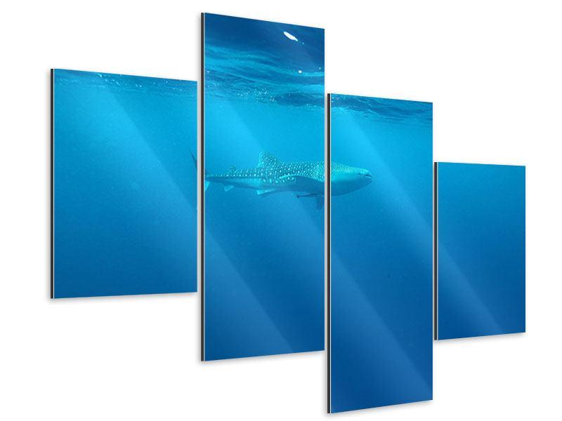 Aluminiumbild 4-teilig modern Der Walhai