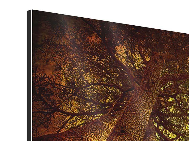 Aluminiumbild 4-teilig modern Cedar Baum