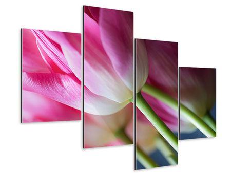 Aluminiumbild 4-teilig modern Makro Tulpen