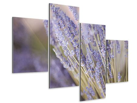 Aluminiumbild 4-teilig modern Lavendel XXL