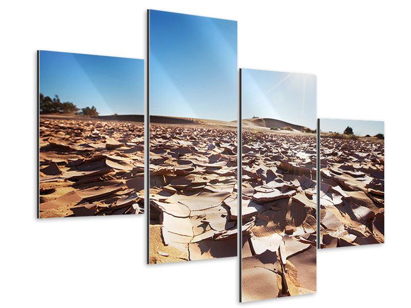 Aluminiumbild 4-teilig modern Dürre