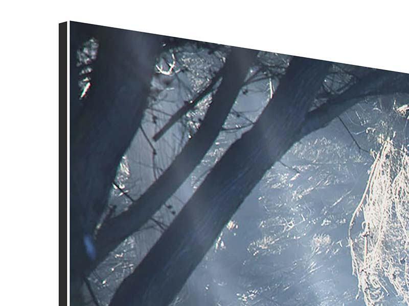 Aluminiumbild 4-teilig modern Lichtdurchflutete Baumallee