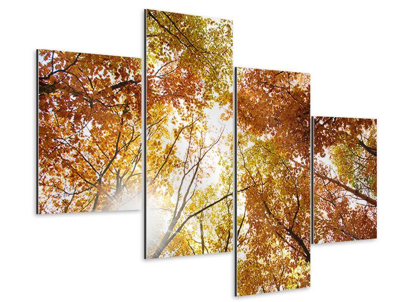 Aluminiumbild 4-teilig modern Herbstbäume