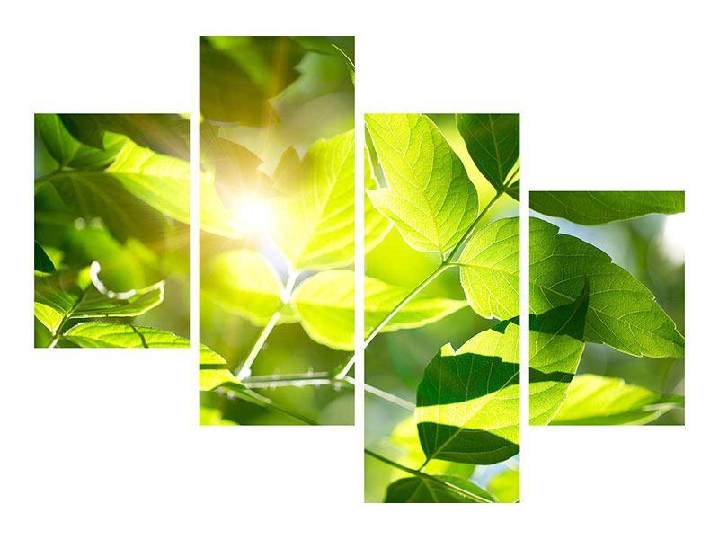 Aluminiumbild 4-teilig modern Es grünt so grün