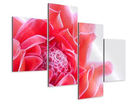 Aluminiumbild 4-teilig modern Etlingera XXL