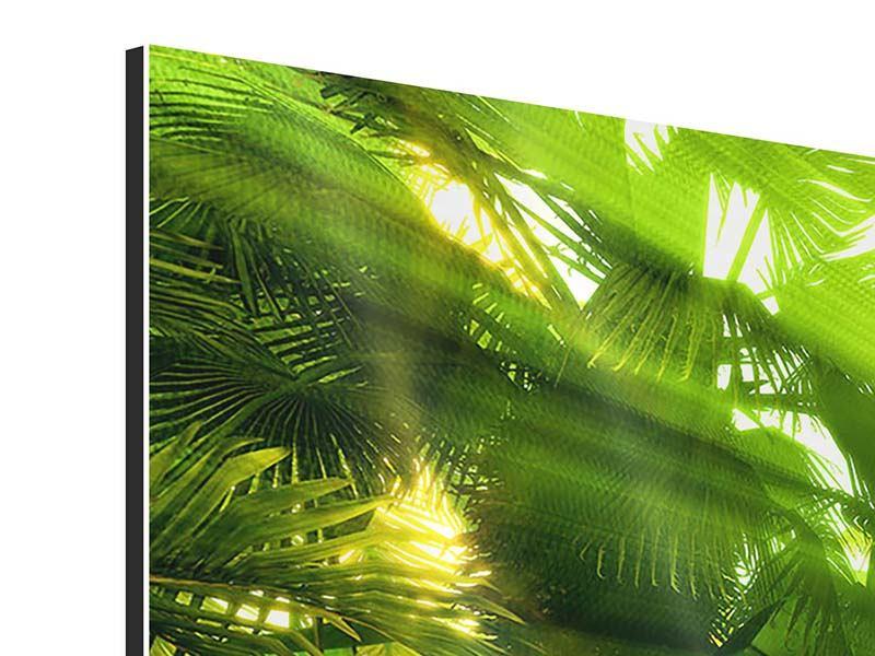 Aluminiumbild 4-teilig modern Sonnenaufgang im Regenwald