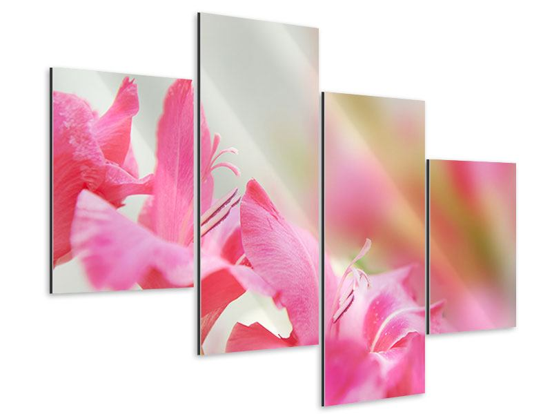 Aluminiumbild 4-teilig modern Gladiolen