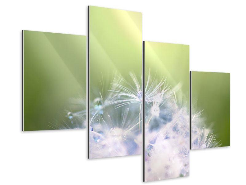 Aluminiumbild 4-teilig modern Pusteblume XL im Morgentau