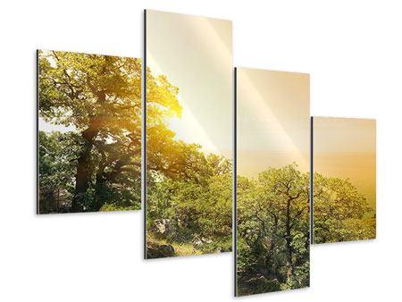 Aluminiumbild 4-teilig modern Sonnenuntergang in der Natur