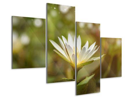 Aluminiumbild 4-teilig modern Lilien-Lichtspiel