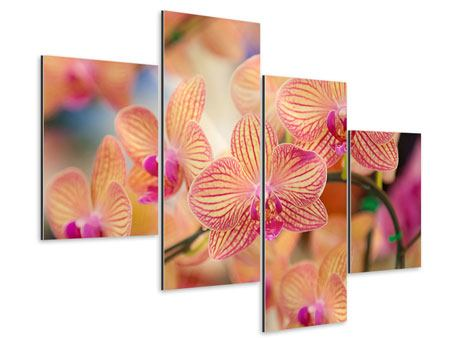 Aluminiumbild 4-teilig modern Exotische Orchideen