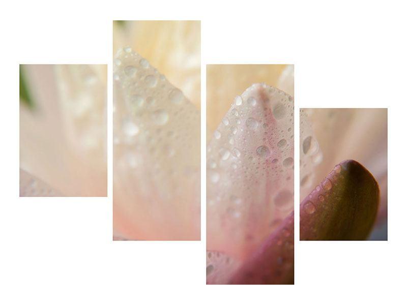 Aluminiumbild 4-teilig modern Close Up Seerose