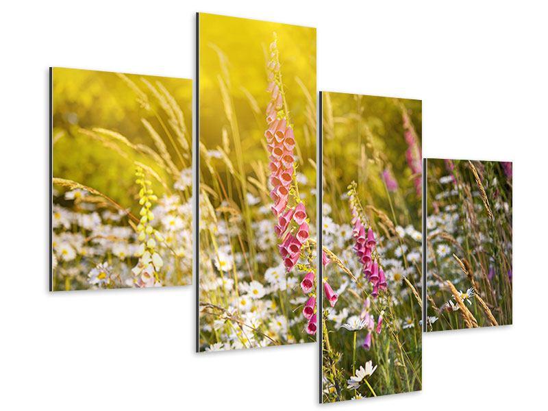 Aluminiumbild 4-teilig modern Sommerliche Blumenwiese