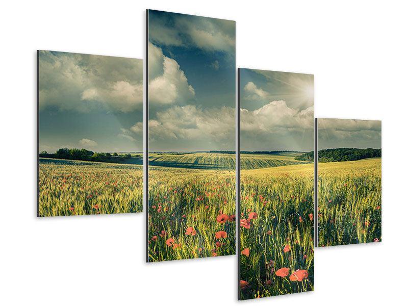 Aluminiumbild 4-teilig modern Der Mohn im Weizenfeld