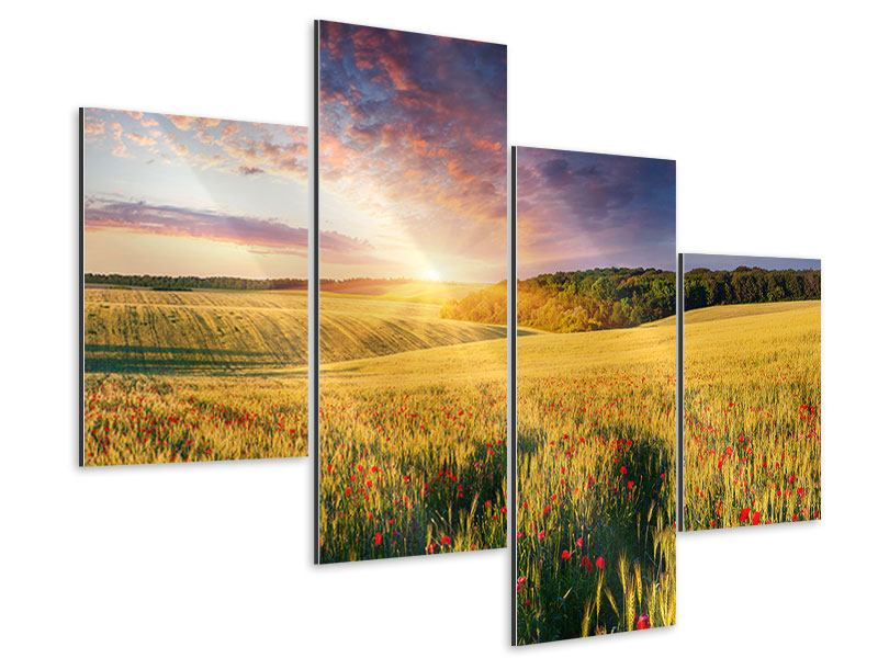 Aluminiumbild 4-teilig modern Ein Blumenfeld bei Sonnenaufgang